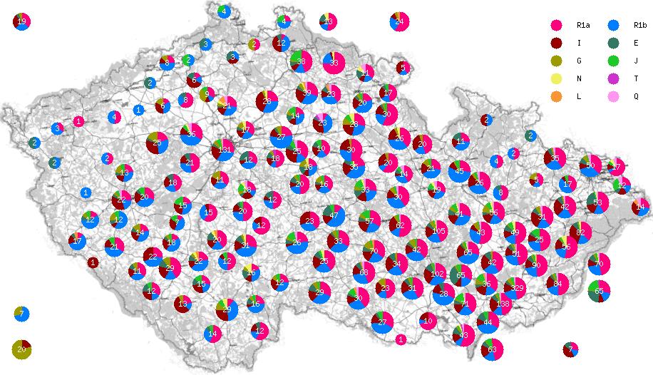 CYDNA Haplogroup Distribution